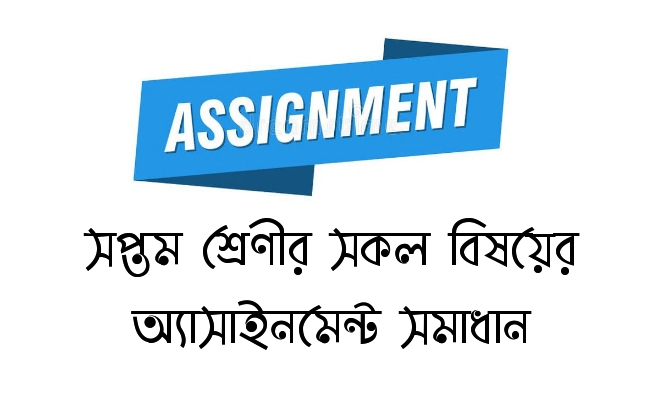 Class 7 Assignment Answer