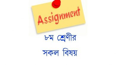 class 8 assignment solution